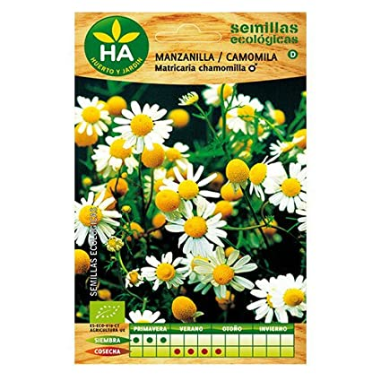SEMILLAS ECOLÓGICAS MANZANILLA CAMOMILA HA: Amazon.es: Belleza