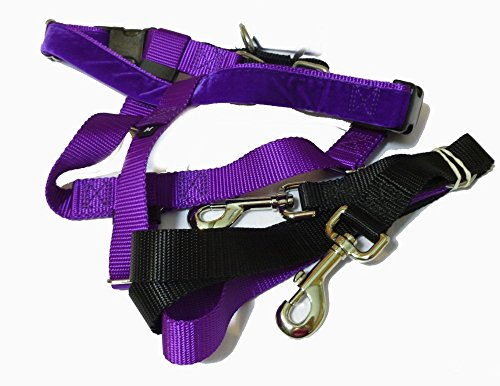 Freedom No-Pull Dog Harness Training Package with Leash, Purple Medium (1