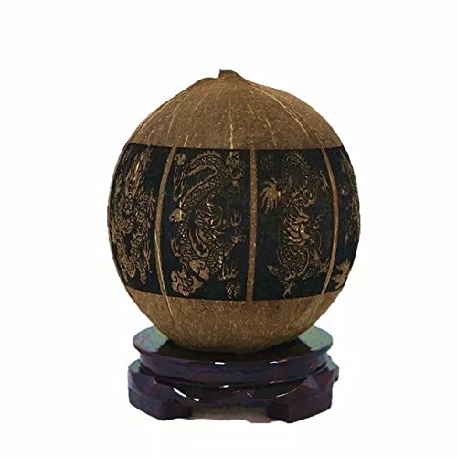 Hand-Painted by Native artisans African Traditi Giant Land Snail Shell Packaged in a Treasure Box. 5-7, Brown, Black No Two Shells are The Same Pet Snail: Ulli