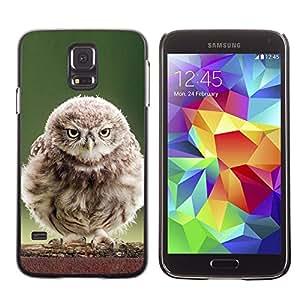 All Phone Most Case / Oferta Especial Duro Teléfono Inteligente PC Cáscara Funda Cubierta de proteccion Caso / Hard Case Samsung Galaxy S5 // Fluffy Baby Owl
