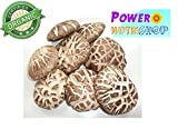 GROWN ORGANICALLY PREMIUM DRIED TEA COLOR ORGANIC SHIITAKE MUSHROOM4-5 cm,GRADE A++,1 LB (16OZ)