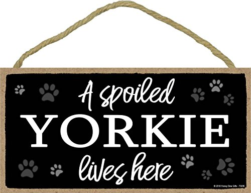 A Spoiled Yorkie Lives Here - 5 x 10 inch Hanging Yorkie Decor, Wall Art, Decorative Wood Sign Home Decor, Yorkie Gifts