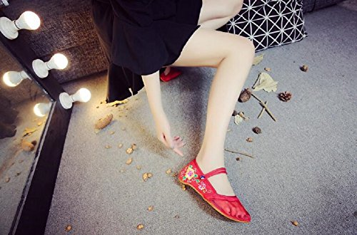 Lazutom Women's Chinese Style Embroidery Mesh Casual Mary Jane Cheongsam Party Dress Shoes Red uXDEDLx