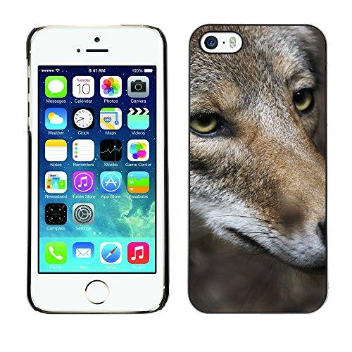 Premio Sottile Slim Cassa Custodia Case Cover Shell // V00002118 Coyote // Apple iPhone 5 5S 5G