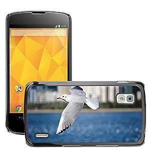 Super Stella Slim PC Hard Case Cover Skin Armor Shell Protection // M00421845 Seagull Animal Bird Seabird Flight // LG Nexus 4 E960