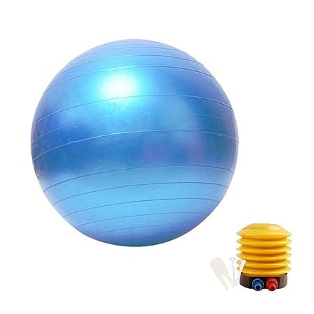 Eruditter - Balón de Equilibrio de Yoga para Yoga: Amazon.es ...