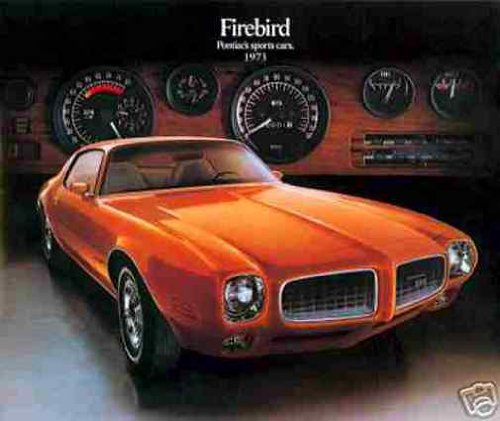 1973-PONTIAC FIREBIRD, TRANS AM, FORMULA 400 & ESPRIT BEAUTIFUL DEALERS SALES BROCHURE - ADVERTISMENT - 73 pdf