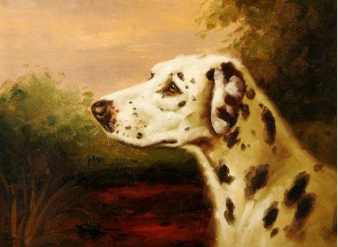 Video Dog Tarantula Costume ('a Spotty Dog' oil painting, 24x33 inch / 61x84 cm ,printed on high quality polyster Canvas ,this High Resolution Art Decorative Prints on Canvas is perfectly suitalbe for Living Room)