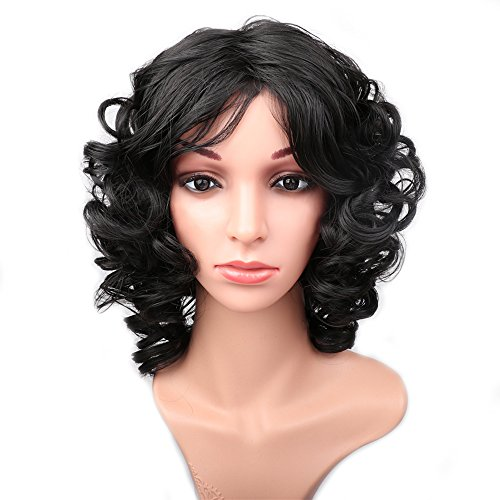 [Fani Kinky Curly Wigs for Women Synthetic Fluffy Full Hair Heat Resistant Black Wig ?Cosplay With a Fee Wig] (Curly Synthetic Hair)