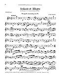 ANDANTE ET ALLEGRO for C Trumpet or B-flat Cornet and Piano (authentic 1903 edition) (Consortium 31688)