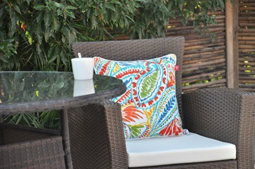 "Pcinfuns Set of 2 Patio Indoor/Outdoor All Weather Decorative Throw Pillow Cover Cushion Case for Replacement 18"" x 18""-Phoenix - 100% Spun Polyester. Package includes:2 pcs 18 x 18 inches square toss pillow covers, insert NOT included. Zipper closure easy for pillow covers replacement. - patio, outdoor-throw-pillows, outdoor-decor - 51L292GJscL -"