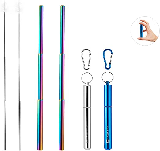 Reusable Collapsible Stainless Steel Straws with Aluminum Key chain Case Silver