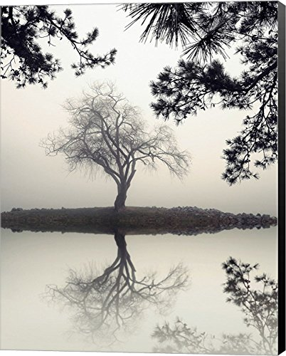 Winter Willow by Nicholas Bell Canvas Art Wall Picture, Museum Wrapped with Black Sides, 33 x 42 inches