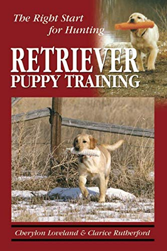 - Retriever Puppy Training: The Right Start for Hunting