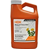 HDX 64 oz. Weed and Grass Killer Concentrate