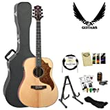 Luna AMT 100 Acoustic Guitar with Accessories and Hardcase