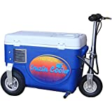 Cruzin Cooler Electric Scooter Cooler