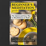 Beginner's Meditation Guide: The Quick and Easy Way to Mindfulness at Work: Insight Meditation | Alexander Campos