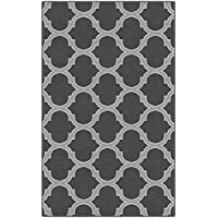 Brumlow Mills EW10018-30x46 Two Toned Moroccan Trellis Traditional Lattice Area Rug, 26 x 310, Gray