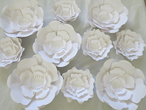 10 Piece Giant Flower Wall Backdrop Set, White Rose Wedding Photography Background 6-12'' Paper Roses by Always In Blossom