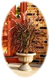 "Bloem Grecian Urn Planter, 18"", Peppercorn"