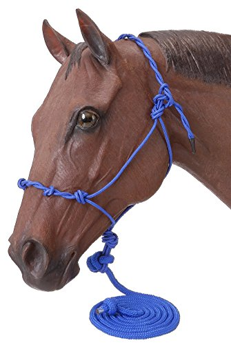 Tough 1 Poly Rope Halter W/Knots & 14Ft Lead, Royal ()