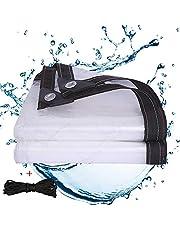 J&SKD Waterdicht transparant dekzeil dekzeil doorzichtig met ogen groot dekzeil voor buiten, luifel en dekzeilen weerbestendig zeil voor planten en planten, touw inbegrepen