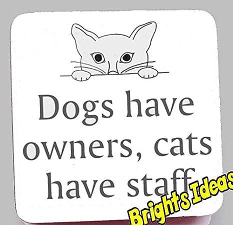 Perros Gatos propietarios, tener Personal con imagen de un gato Posavasos Posavasos, diseño de