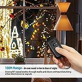 DEWENWILS Outdoor Indoor Remote Control Outlet