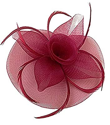 Kentucky Derby Fascinator Hair Clip Hat Feather Prom Cocktail Party Headwear