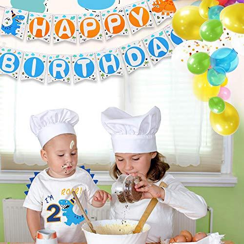 AMZTM Dinosaur Birthday T Shirt 2nd Birthday Party Dino B-Day Boys Tee Gift