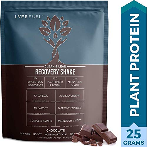 Post Workout Recovery Drink by LYFE FUEL - Build Lean Muscle & Reduce Soreness - Plant Based Vegan Superfood Powder - Organic Pea, Rice & Quinoa Protein, Maca, Acerola & BCAAs (Chocolate - 2 pound)