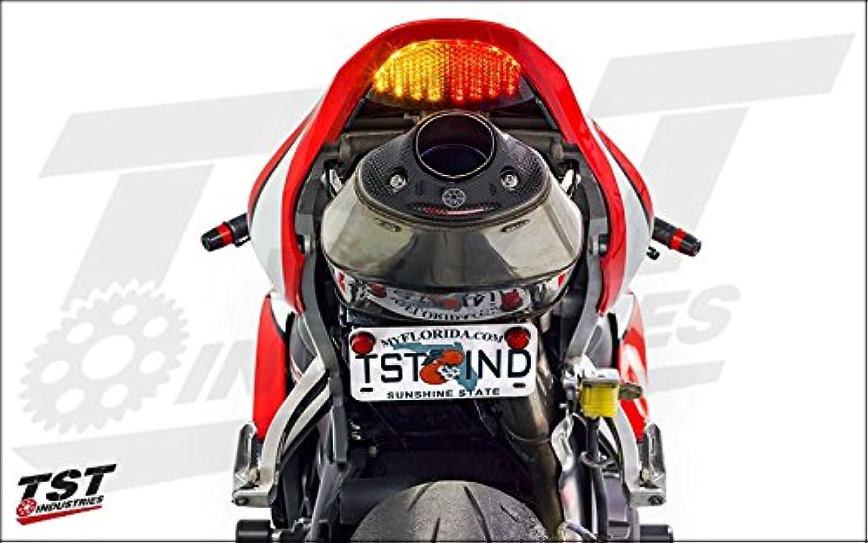 些細なスラダム策定するテールランプ ブレーキランプ LED バイク用 汎用 12V DC レッド 高輝度 防震 防水