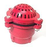 PT Coupling Ductile Iron Pump Foot Valve Strainer, 6''