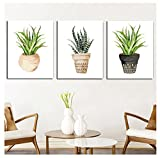 MADE4U [ Succulent Plants ] [ 20'' ] [ Thicker (1'') ] [ Wood Framed ] Paint by Numbers Kit with Brushes and Paints ( Succulent Plants Great Saver Bundle of 3 XL91X304 )