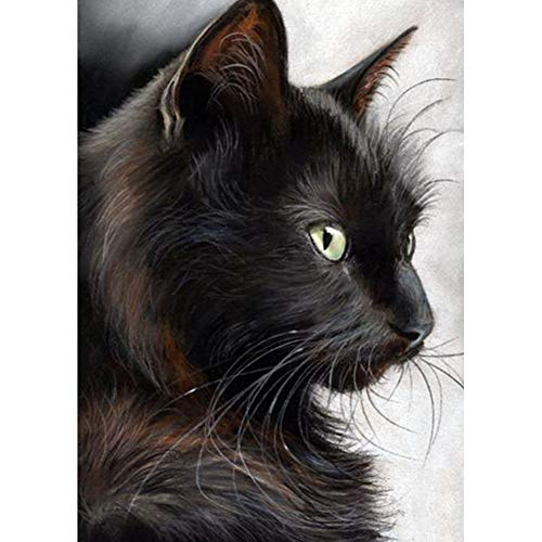 DIY 5D Diamond Painting kit Black cat Art, Avton Full Diamond Watercolor Rhinestone Embroidery Cross Stitch cat Embroidery Crafts Canvas Wall Decoration (Black Cat Stitch Cross)