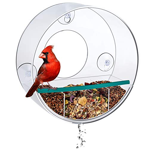 Birdious Tube Window Bird Feeder: Watch Backyard Birds from Your House. Removable Tray with Drain Holes, Large Birdhouse, Clear See Through, Strong Suction Cups- Gift Idea (Feeder Bird Presents)