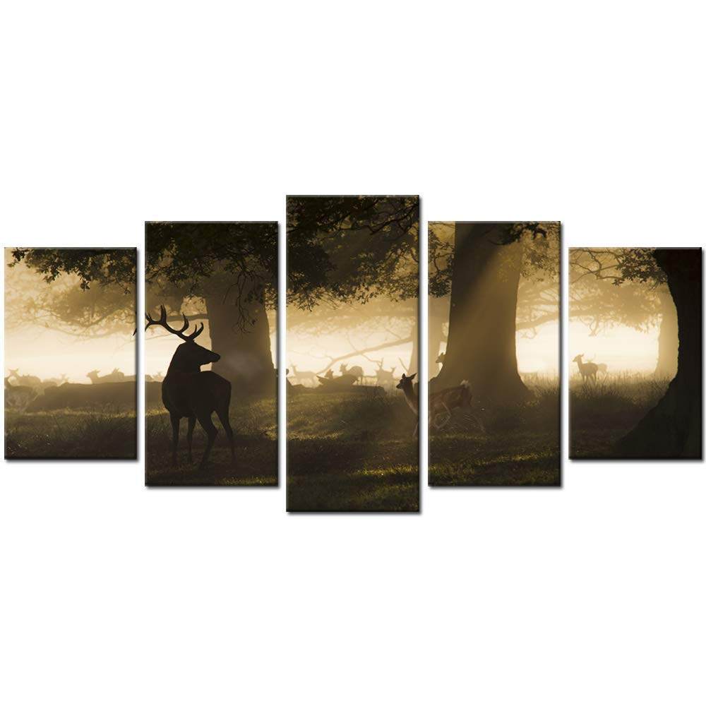 Biuteawal - 5 Panel Wall Art Running Red Deer in Sunshine Forest Picture Print on Canvas Wildlife Hunting Brown Themed Landscape for Living Room Bedroom Bathroom Office Home Wall Decor Decoration