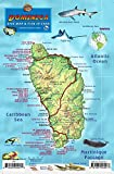 Dominica Dive Map & Coral Reef Creatures Guide Franko ...