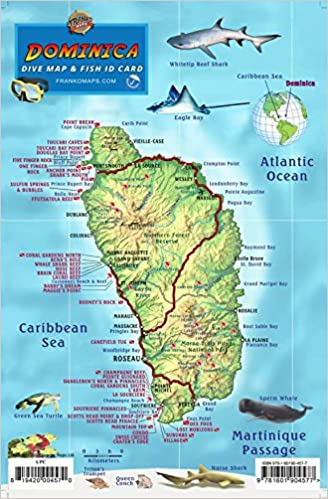 Dominica Dive Map & Coral Reef Creatures Guide Franko Maps Laminated on