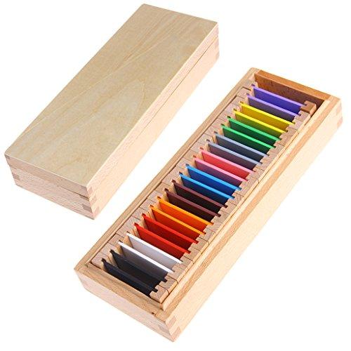 zobeen Montessori Sensorial Material Learning