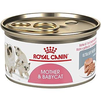 Amazon.com : Royal Canin Baby Cat Milk 300 G : Pet Supplies