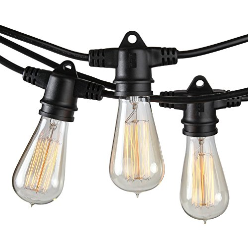 Brightech Ambience Pro Vintage Outdoor String Lights - 48 Ft Waterproof Commercial Grade Edison Filament Bulbs For Cafe/Bistro Ambience On Your Patio, Garden, Porch, Backyard – Black by Brightech