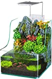 Penn-Plax Aqua Terrarium Planting Tank with Aquarium for Fish,...