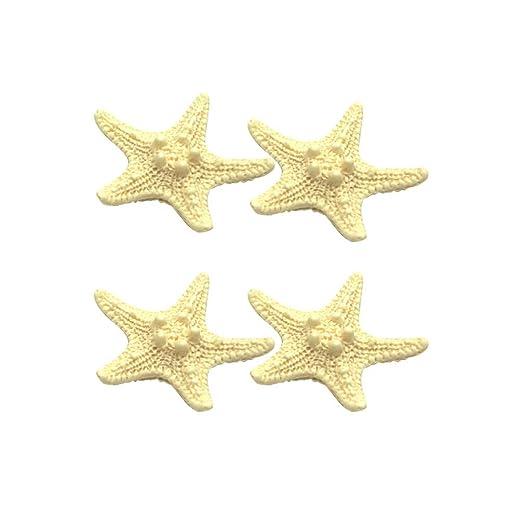 VOSAREA 4 Piezas Imanes de Nevera de Resina de Estrella de Mar ...
