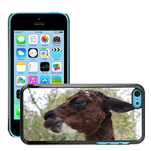Just Phone Cover Hard plastica indietro Case Custodie Cover pelle protettiva Per // M00140259 Lama Zoo visage zoo pour enfants // Apple iPhone 5C