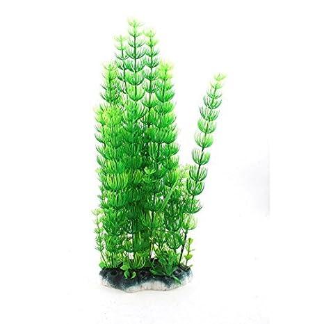 Planta de agua de plástico acuario artificial 13.8 pulgadas Altura verdes: Amazon.es: Productos para mascotas