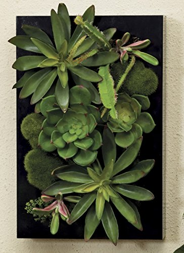 3D Artificial Succulents Wall Garden in Black Frame Home Decor Faux Flora Cactus (Large 12