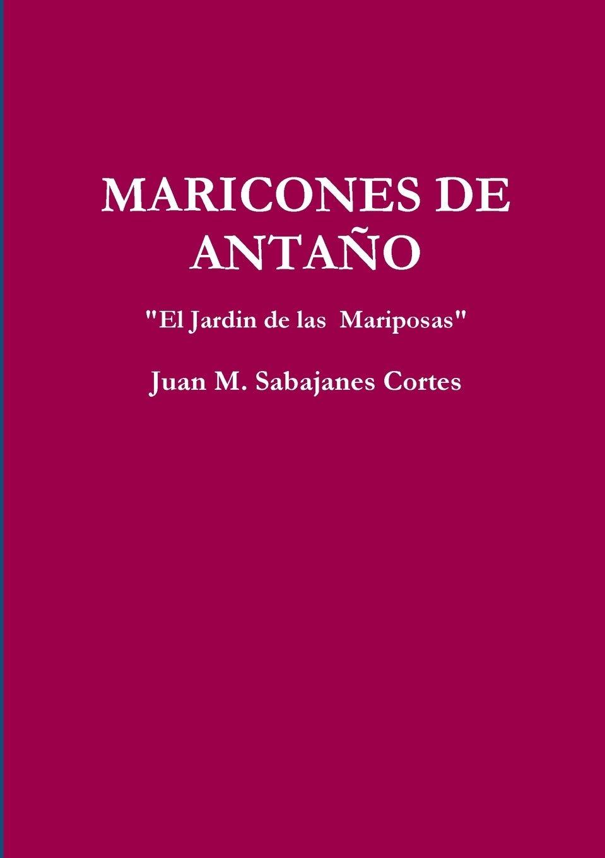 MARICONES DE ANTA?O