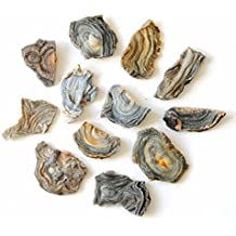 """12 Pcs 1.5-2"""" Natural thin Agate for Jewelry Maker for Wire & Wrap, By JIC Gem"""